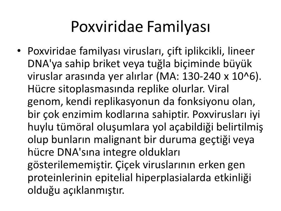 Poxviridae Familyası • Poxviridae familyası virusları, çift iplikcikli, lineer DNA'ya sahip briket veya tuğla biçiminde büyük viruslar arasında yer al