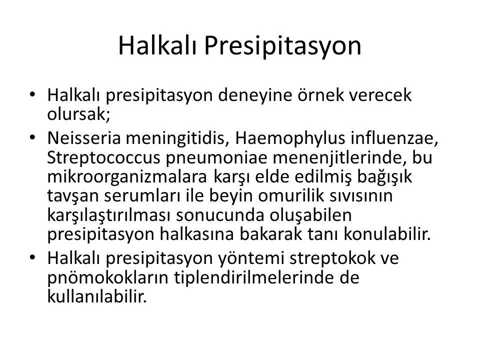 Halkalı Presipitasyon • Halkalı presipitasyon deneyine örnek verecek olursak; • Neisseria meningitidis, Haemophylus influenzae, Streptococcus pneumoni