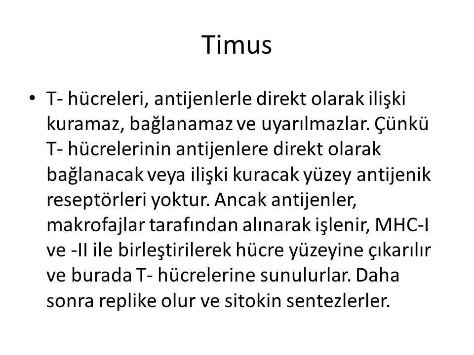 Timus • T- hücreleri, antijenlerle direkt olarak ilişki kuramaz, bağlanamaz ve uyarılmazlar. Çünkü T- hücrelerinin antijenlere direkt olarak bağlanaca