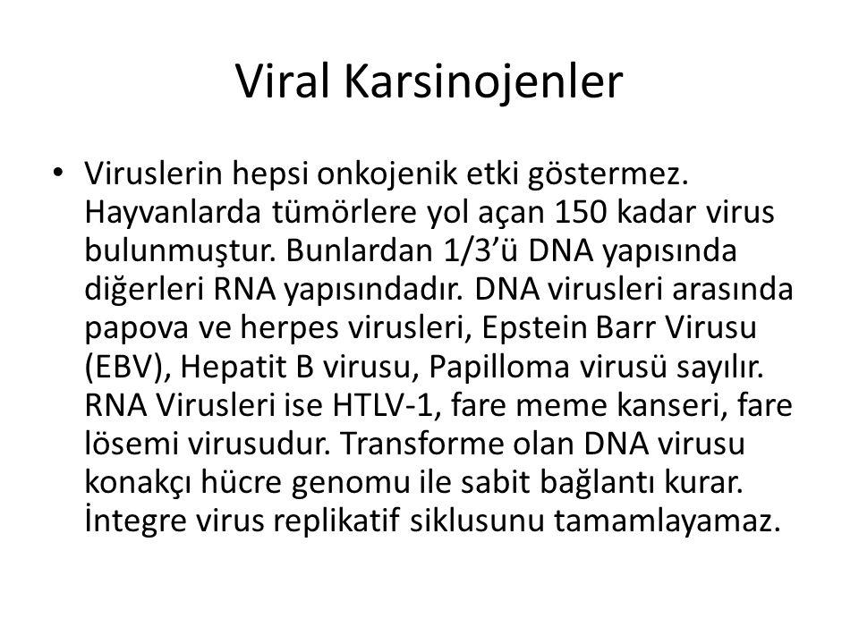 Viral Karsinojenler • Viruslerin hepsi onkojenik etki göstermez. Hayvanlarda tümörlere yol açan 150 kadar virus bulunmuştur. Bunlardan 1/3'ü DNA yapıs