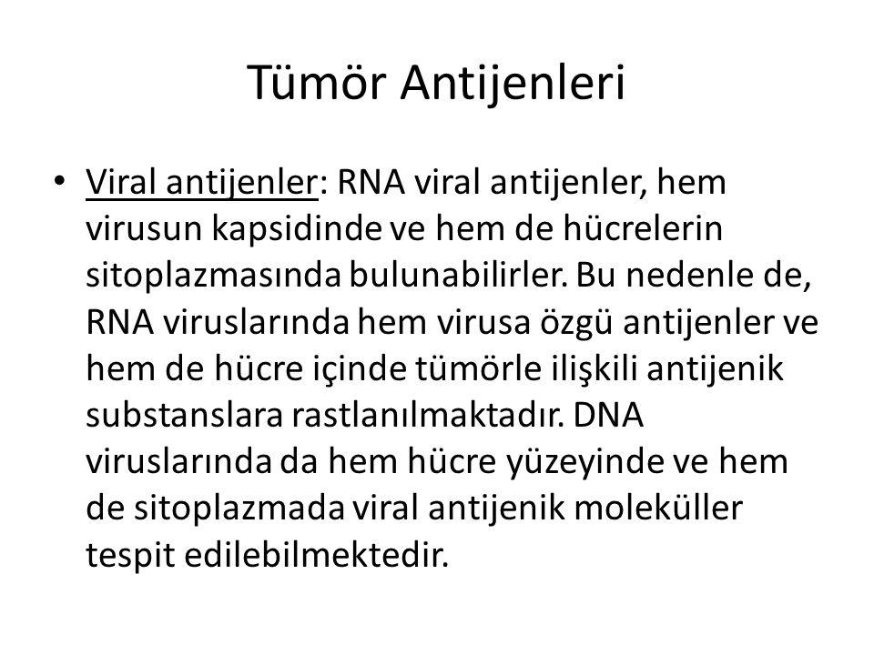 Tümör Antijenleri • Viral antijenler: RNA viral antijenler, hem virusun kapsidinde ve hem de hücrelerin sitoplazmasında bulunabilirler. Bu nedenle de,