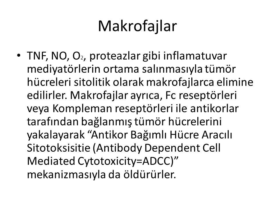 Makrofajlar • TNF, NO, O 2, proteazlar gibi inflamatuvar mediyatörlerin ortama salınmasıyla tümör hücreleri sitolitik olarak makrofajlarca elimine edi