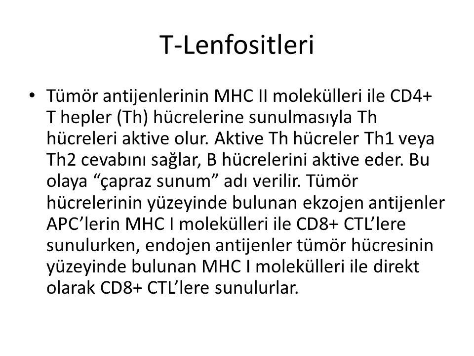 T-Lenfositleri • Tümör antijenlerinin MHC II molekülleri ile CD4+ T hepler (Th) hücrelerine sunulmasıyla Th hücreleri aktive olur. Aktive Th hücreler