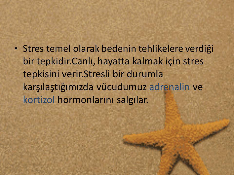 • Stres temel olarak bedenin tehlikelere verdiği bir tepkidir.