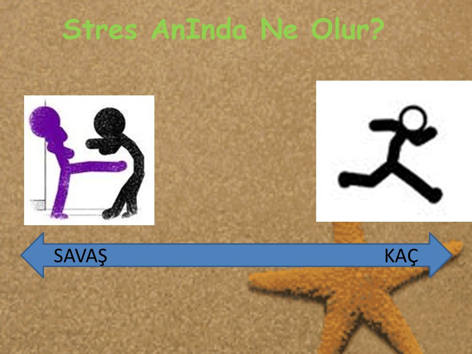 Stres AnInda Ne Olur? SAVAŞ KAÇ