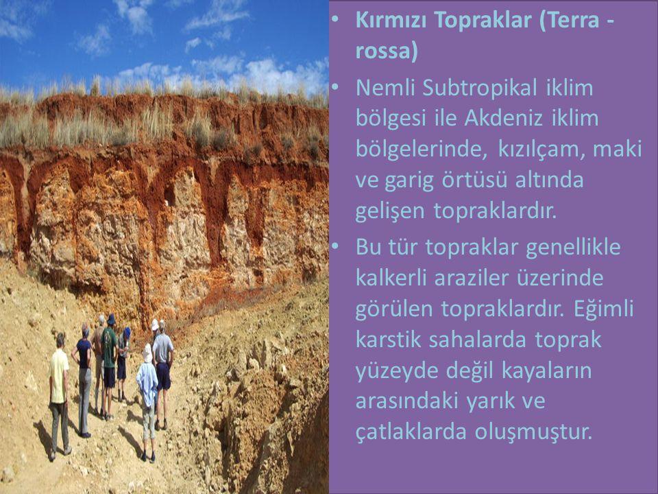 • Kırmızı Topraklar (Terra - rossa) • Nemli Subtropikal iklim bölgesi ile Akdeniz iklim bölgelerinde, kızılçam, maki ve garig örtüsü altında gelişen topraklardır.