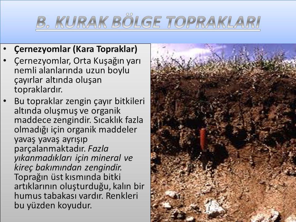• Çernezyomlar (Kara Topraklar) • Çernezyomlar, Orta Kuşağın yarı nemli alanlarında uzun boylu çayırlar altında oluşan topraklardır.