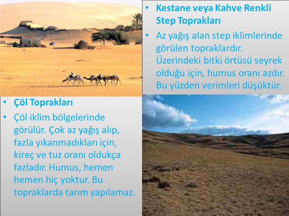 • Çöl Toprakları • Çöl iklim bölgelerinde görülür.