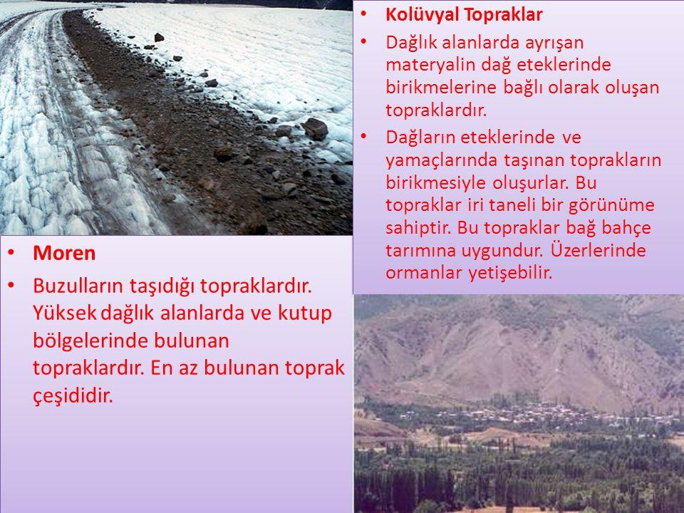 • Moren • Buzulların taşıdığı topraklardır.