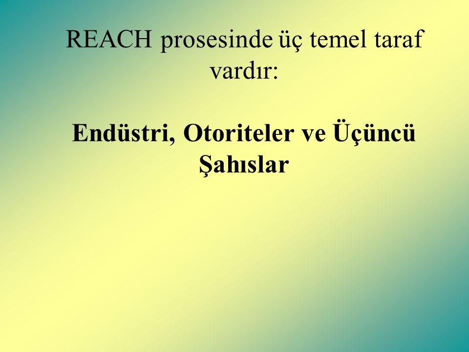 REACH prosesinde üç temel taraf vardır: Endüstri, Otoriteler ve Üçüncü Şahıslar