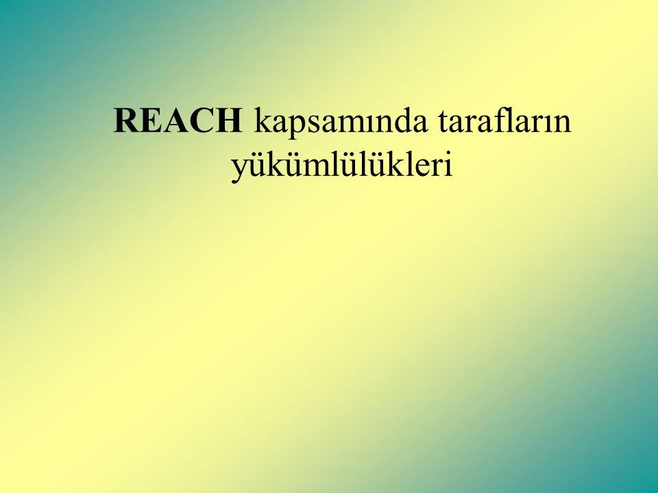 Üçüncü Şahıslar: REACH kapsamında üçüncü şahıslar, kamu ve özel kuruluşları içermektedir.(kişiler, kamu kuruluşları, sivil toplum örgütleri, dolaylı olarak dosyalara katkıda bulunan şirketler, uluslararası organizasyonlar ve AB'ye üye olmayan ülkeler gibi).