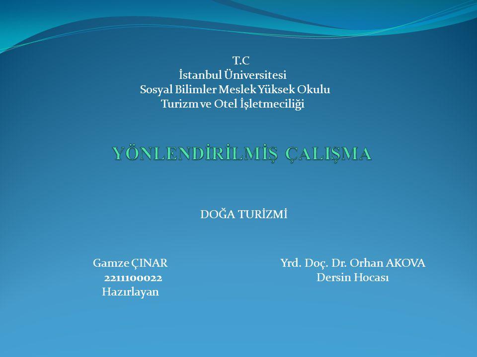 Istanbul üniversitesi sosyal bilimler meslek yüksek okulu