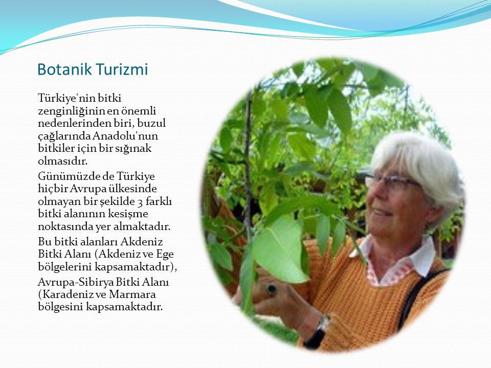 Botanik Turizmi Türkiye'nin bitki zenginliğinin en önemli nedenlerinden biri, buzul çağlarında Anadolu'nun bitkiler için bir sığınak olmasıdır. Günümü