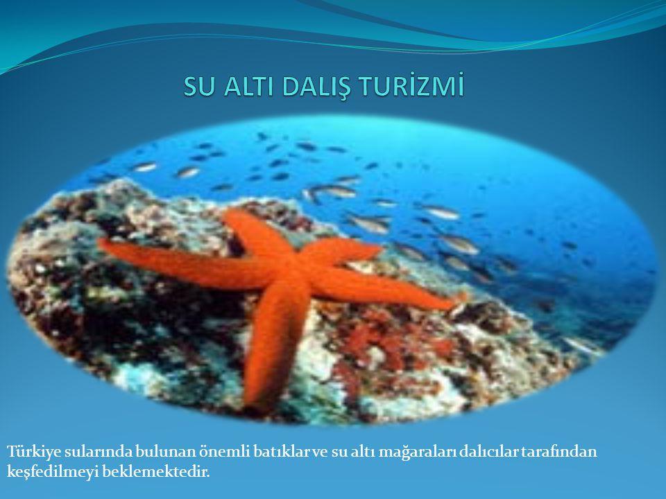 Türkiye sularında bulunan önemli batıklar ve su altı mağaraları dalıcılar tarafından keşfedilmeyi beklemektedir.