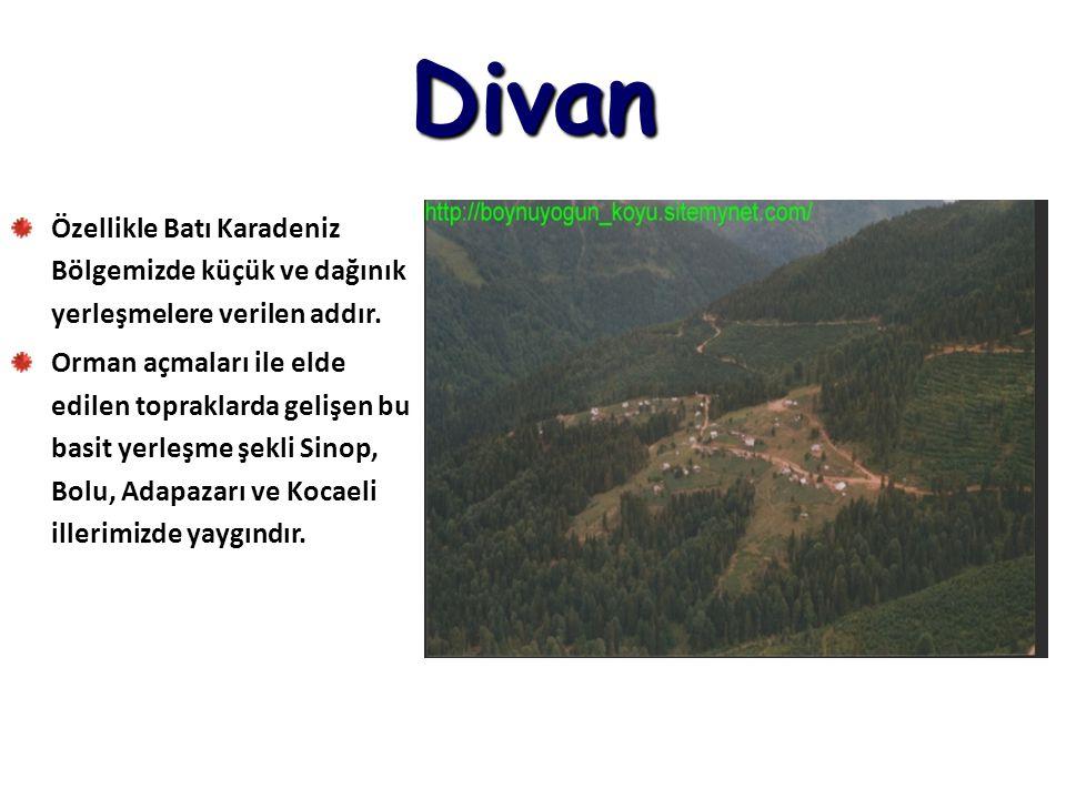 Divan Özellikle Batı Karadeniz Bölgemizde küçük ve dağınık yerleşmelere verilen addır. Orman açmaları ile elde edilen topraklarda gelişen bu basit yer
