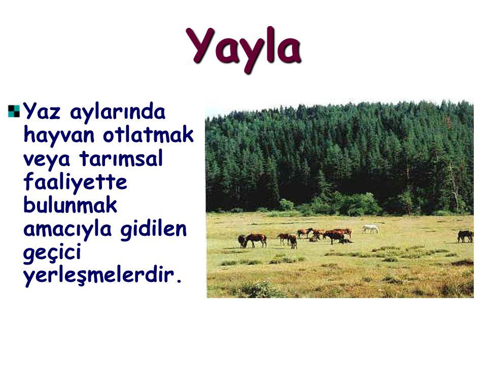 Yayla Yaz aylarında hayvan otlatmak veya tarımsal faaliyette bulunmak amacıyla gidilen geçici yerleşmelerdir.