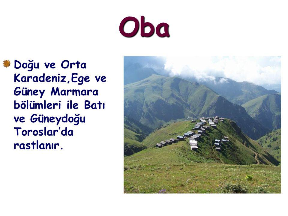 Oba Doğu ve Orta Karadeniz,Ege ve Güney Marmara bölümleri ile Batı ve Güneydoğu Toroslar'da rastlanır.