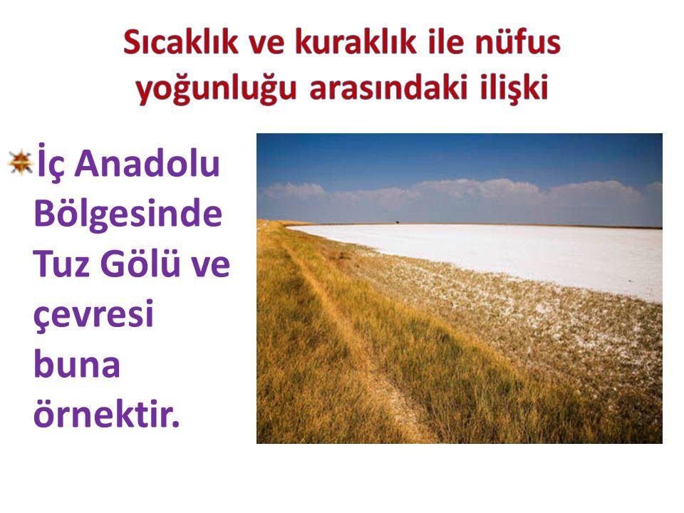 İç Anadolu Bölgesinde Tuz Gölü ve çevresi buna örnektir.