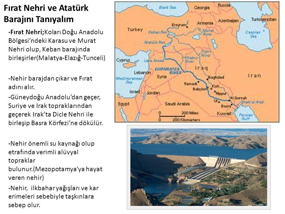 Fırat Nehri ve Atatürk Barajını Tanıyalım -Fırat Nehri;Koları Doğu Anadolu Bölgesi'ndeki Karasu ve Murat Nehri olup, Keban barajında birleşirler(Malat