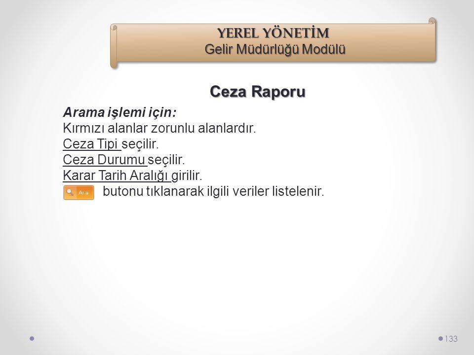 Ceza Raporu 132 Raporlar/Ceza Raporu seçilir.
