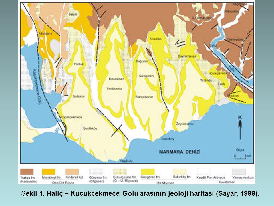 Sekil 1. Haliç – Küçükçekmece Gölü arasının jeoloji haritası (Sayar, 1989).