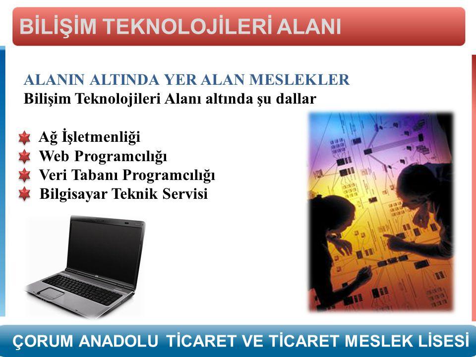 ALANIN ALTINDA YER ALAN MESLEKLER Bilişim Teknolojileri Alanı altında şu dallar Ağ İşletmenliği Web Programcılığı Veri Tabanı Programcılığı Bilgisayar Teknik Servisi BİLİŞİM TEKNOLOJİLERİ ALANI ÇORUM ANADOLU TİCARET VE TİCARET MESLEK LİSESİ
