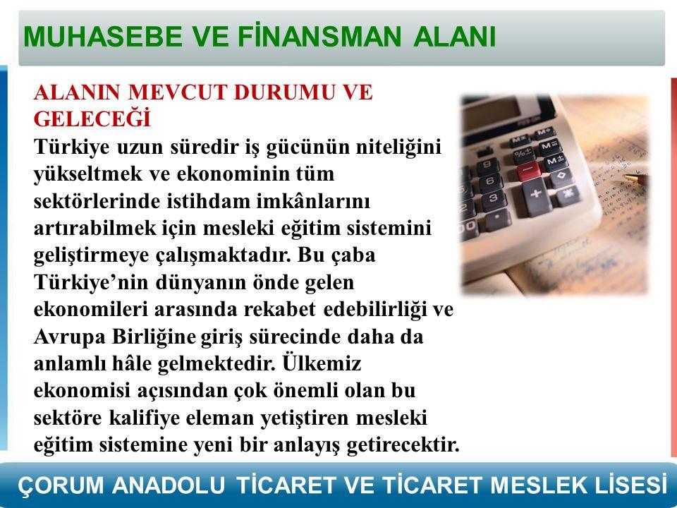 MUHASEBE VE FİNANSMAN ALANI ALANIN MEVCUT DURUMU VE GELECEĞİ Türkiye uzun süredir iş gücünün niteliğini yükseltmek ve ekonominin tüm sektörlerinde istihdam imkânlarını artırabilmek için mesleki eğitim sistemini geliştirmeye çalışmaktadır.
