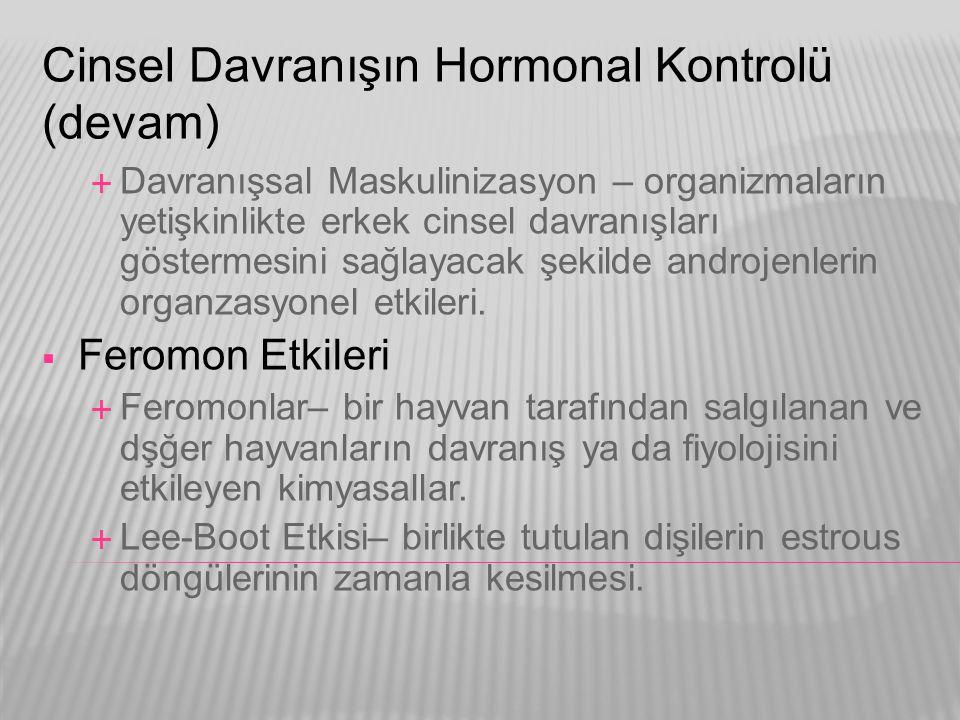 Cinsel Davranışın Hormonal Kontrolü (devam)  Davranışsal Maskulinizasyon – organizmaların yetişkinlikte erkek cinsel davranışları göstermesini sağlay