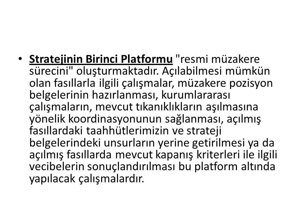 • Stratejinin Birinci Platformu