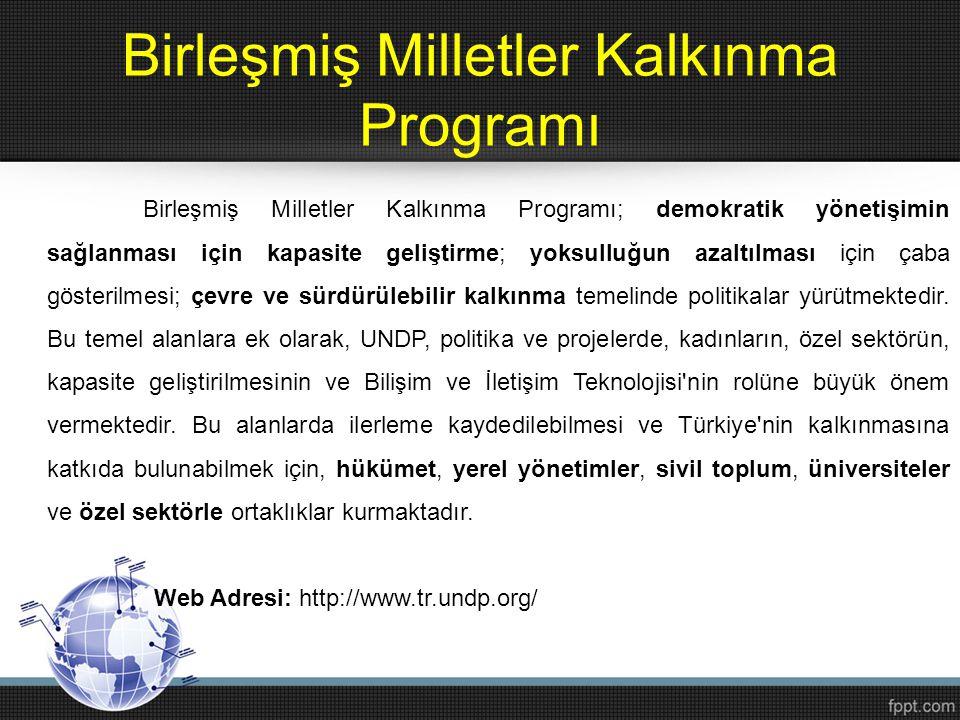 Birleşmiş Milletler Kalkınma Programı Birleşmiş Milletler Kalkınma Programı; demokratik yönetişimin sağlanması için kapasite geliştirme; yoksulluğun a