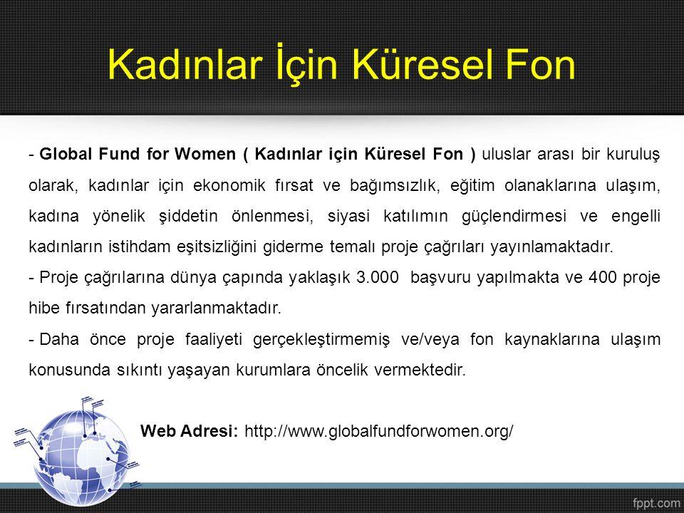 Kadınlar İçin Küresel Fon - Global Fund for Women ( Kadınlar için Küresel Fon ) uluslar arası bir kuruluş olarak, kadınlar için ekonomik fırsat ve bağ