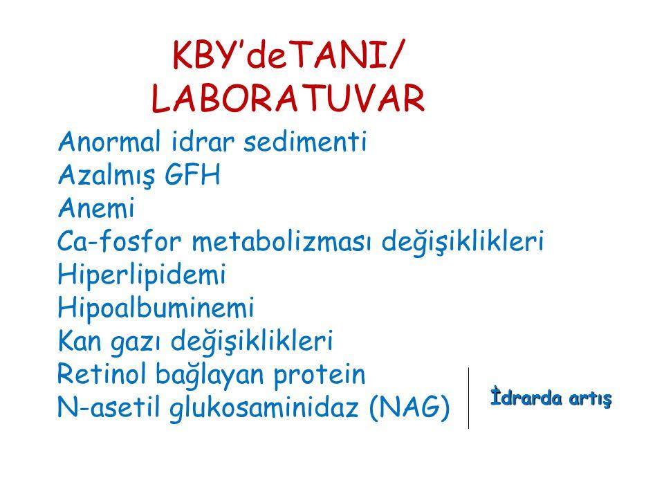 KBY'deTANI/ LABORATUVAR Anormal idrar sedimenti Azalmış GFH Anemi Ca-fosfor metabolizması değişiklikleri Hiperlipidemi Hipoalbuminemi Kan gazı değişiklikleri Retinol bağlayan protein N-asetil glukosaminidaz (NAG) İdrarda artış