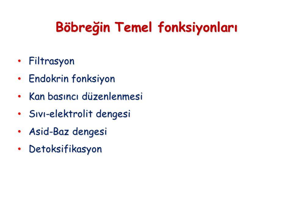 Böbreğin Temel fonksiyonları • Filtrasyon • Endokrin fonksiyon • Kan basıncı düzenlenmesi • Sıvı-elektrolit dengesi • Asid-Baz dengesi • Detoksifikasyon