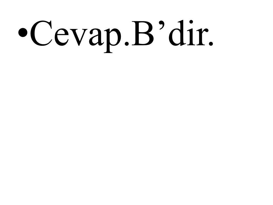 • Cevap.B'dir.