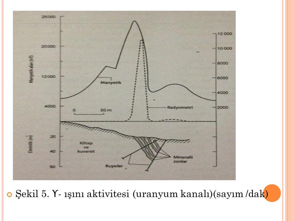 Şekil 5. ϒ - ışını aktivitesi (uranyum kanalı)(sayım /dak)