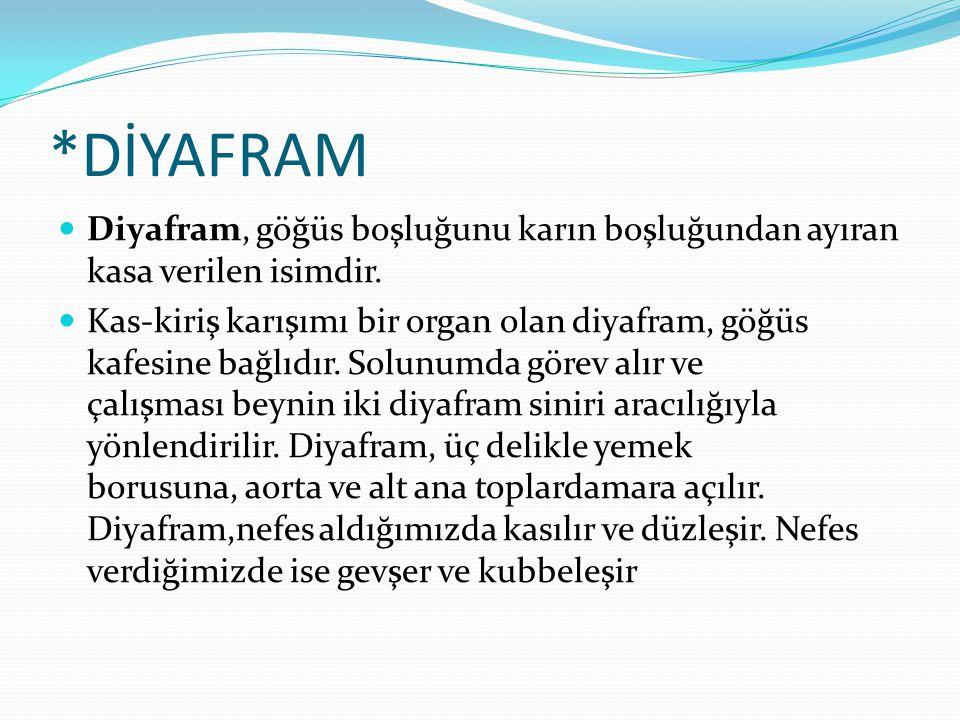 *DİYAFRAM  Diyafram, göğüs boşluğunu karın boşluğundan ayıran kasa verilen isimdir.  Kas-kiriş karışımı bir organ olan diyafram, göğüs kafesine bağl