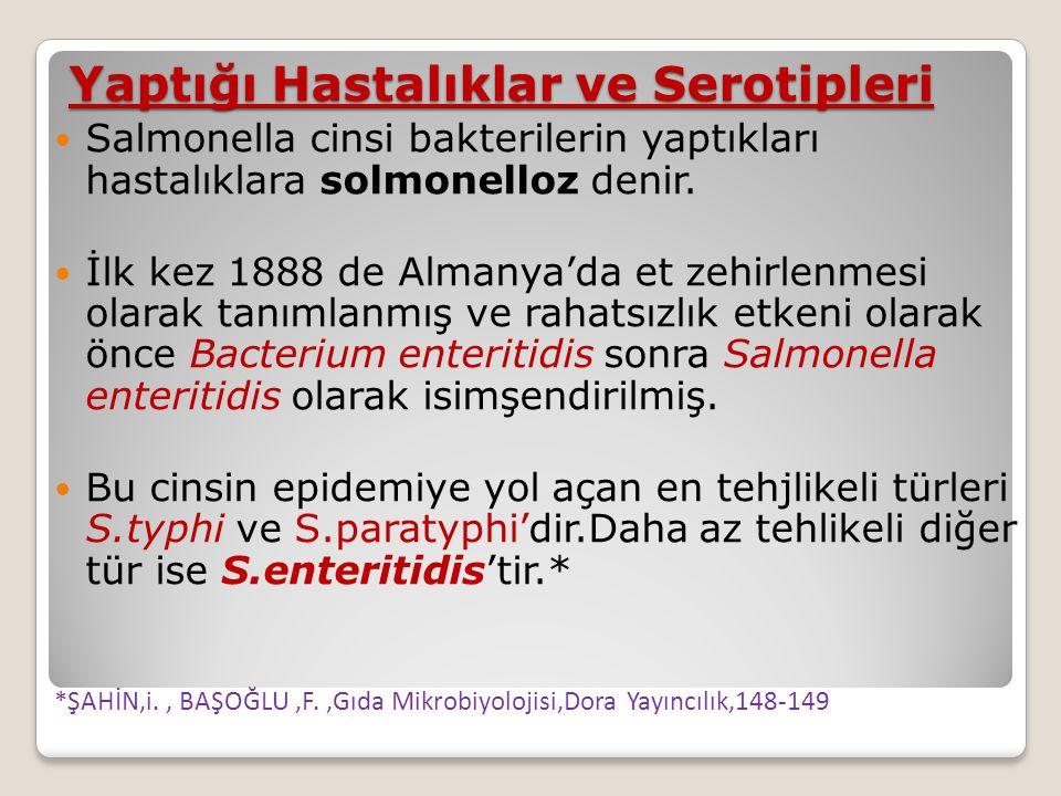  Salmonella cinsi bakterilerin yaptıkları hastalıklara solmonelloz denir.