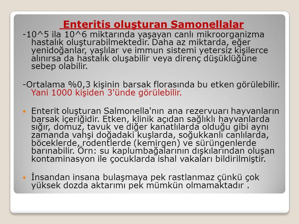 Enteritis oluşturan Samonellalar -10^5 ila 10^6 miktarında yaşayan canlı mikroorganizma hastalık oluşturabilmektedir.