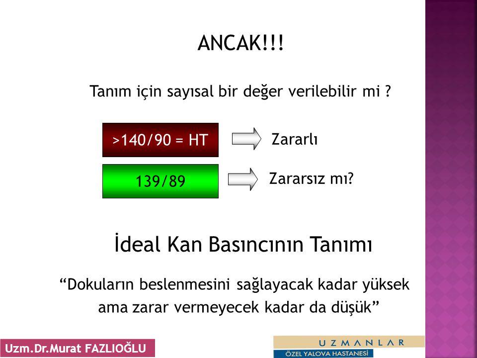 ANCAK!!.Tanım için sayısal bir değer verilebilir mi .