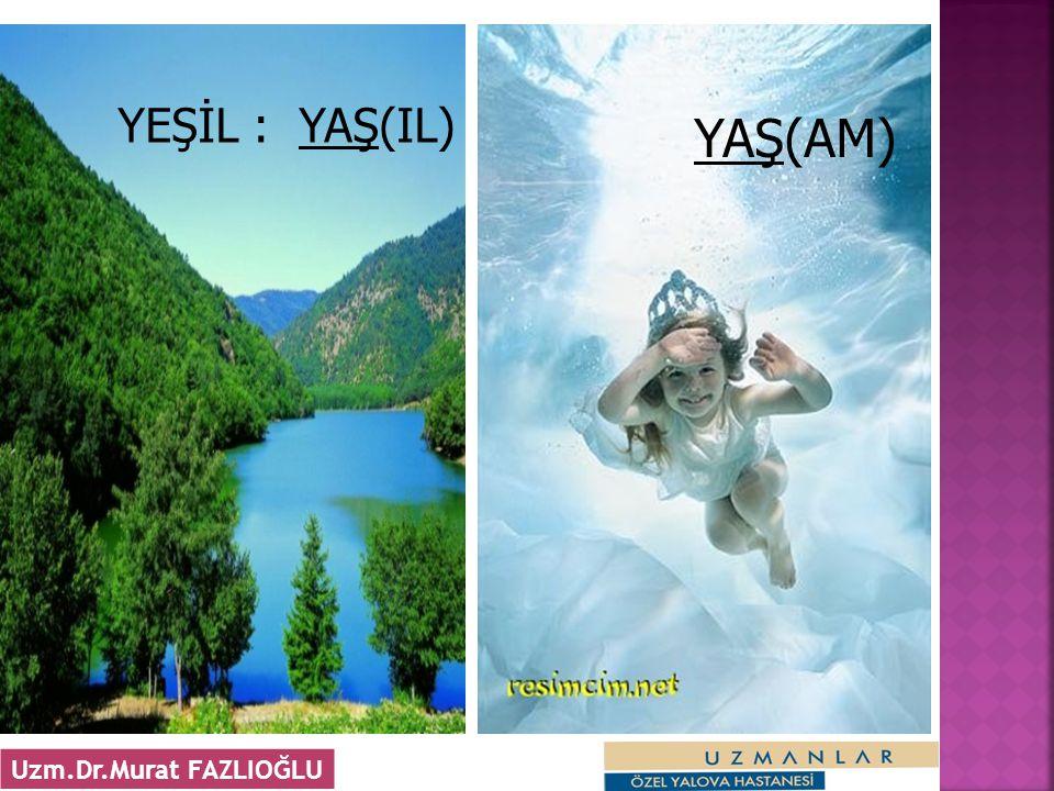 6 YEŞİL : YAŞ(IL) YAŞ(AM) Uzm.Dr.Murat FAZLIOĞLU