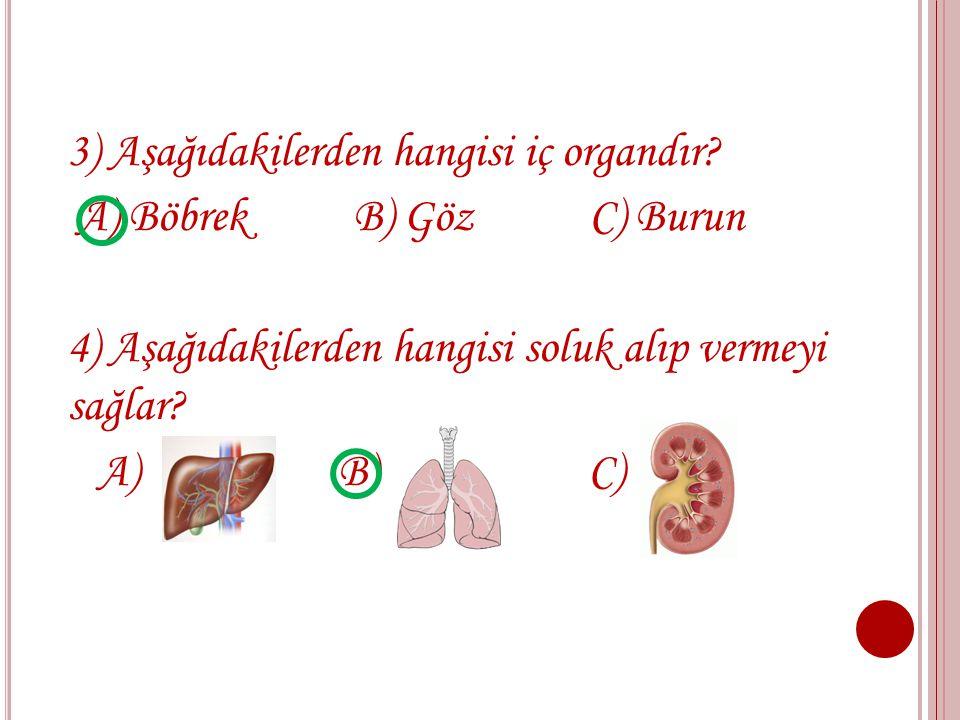 1) Aşağıdakilerden hangisinin görevi vücudun yağ ve şeker seviyesini düzenler ? A) Akciğer B) Böbrek C) Karaciğer 2) Aşağıdakilerden hangisi besinleri