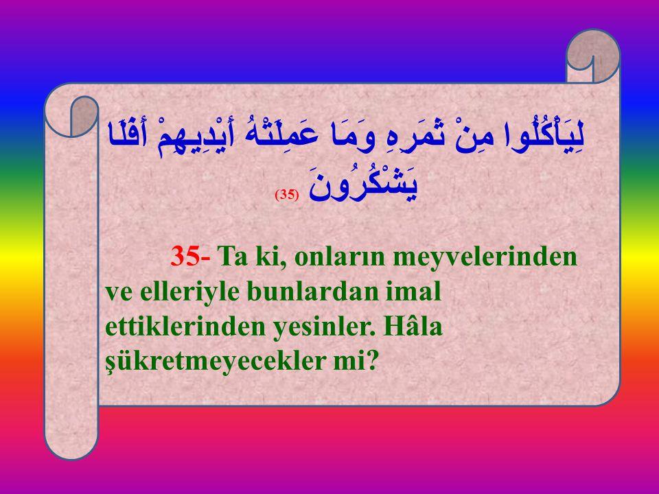 لِيَأْكُلُوا مِنْ ثَمَرِهِ وَمَا عَمِلَتْهُ أَيْدِيهِمْ أَفَلَا يَشْكُرُونَ (35) 35- Ta ki, onların meyvelerinden ve elleriyle bunlardan imal ettikler