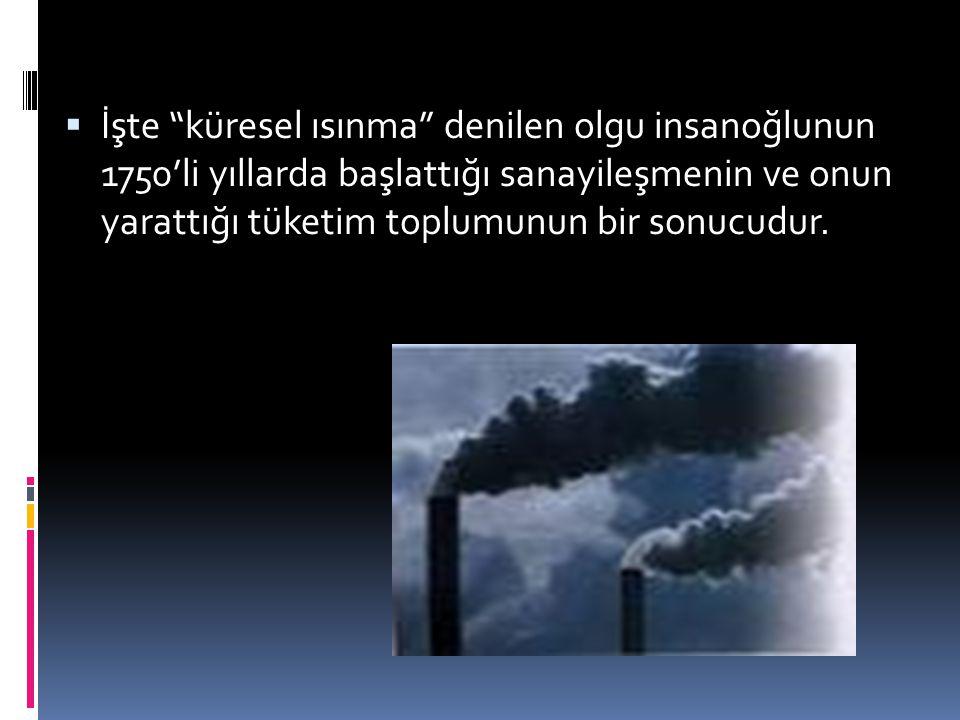""" İşte """"küresel ısınma"""" denilen olgu insanoğlunun 1750'li yıllarda başlattığı sanayileşmenin ve onun yarattığı tüketim toplumunun bir sonucudur."""