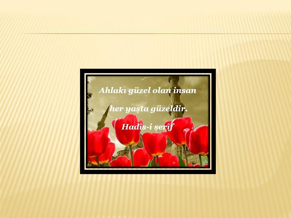  Peygamberimizin (a.s.m) ahlâkının en önemli özelliği, Allah vergisi oluşudur.