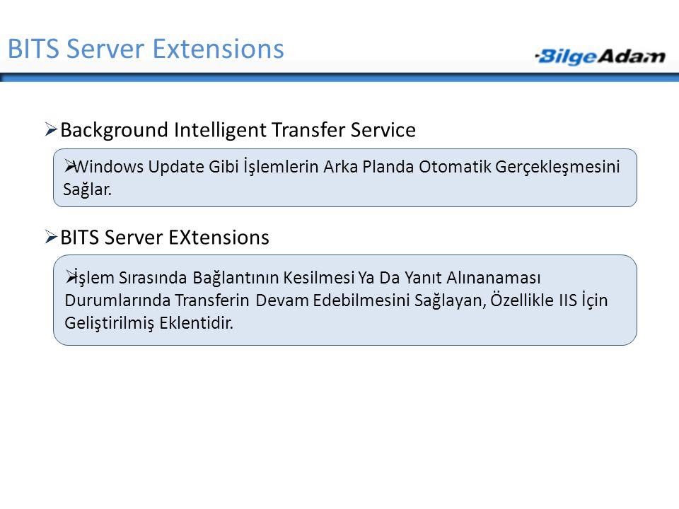  Background Intelligent Transfer Service  BITS Server EXtensions BITS Server Extensions  Windows Update Gibi İşlemlerin Arka Planda Otomatik Gerçek
