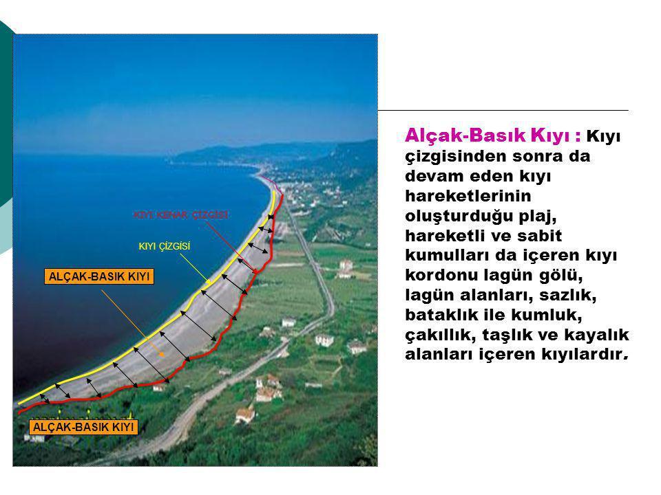 Alçak-Basık Kıyı : Kıyı çizgisinden sonra da devam eden kıyı hareketlerinin oluşturduğu plaj, hareketli ve sabit kumulları da içeren kıyı kordonu lagün gölü, lagün alanları, sazlık, bataklık ile kumluk, çakıllık, taşlık ve kayalık alanları içeren kıyılardır.