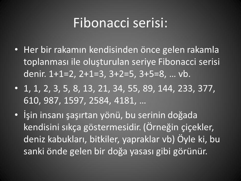 Fibonacci serisi: • Her bir rakamın kendisinden önce gelen rakamla toplanması ile oluşturulan seriye Fibonacci serisi denir. 1+1=2, 2+1=3, 3+2=5, 3+5=