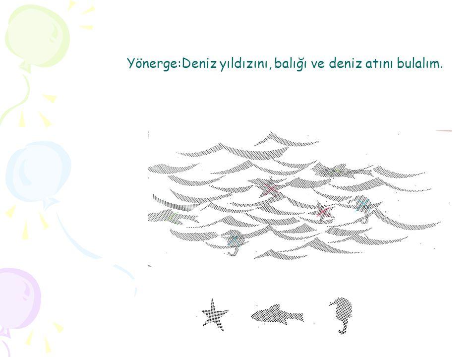 Yönerge:Deniz yıldızını, balığı ve deniz atını bulalım.