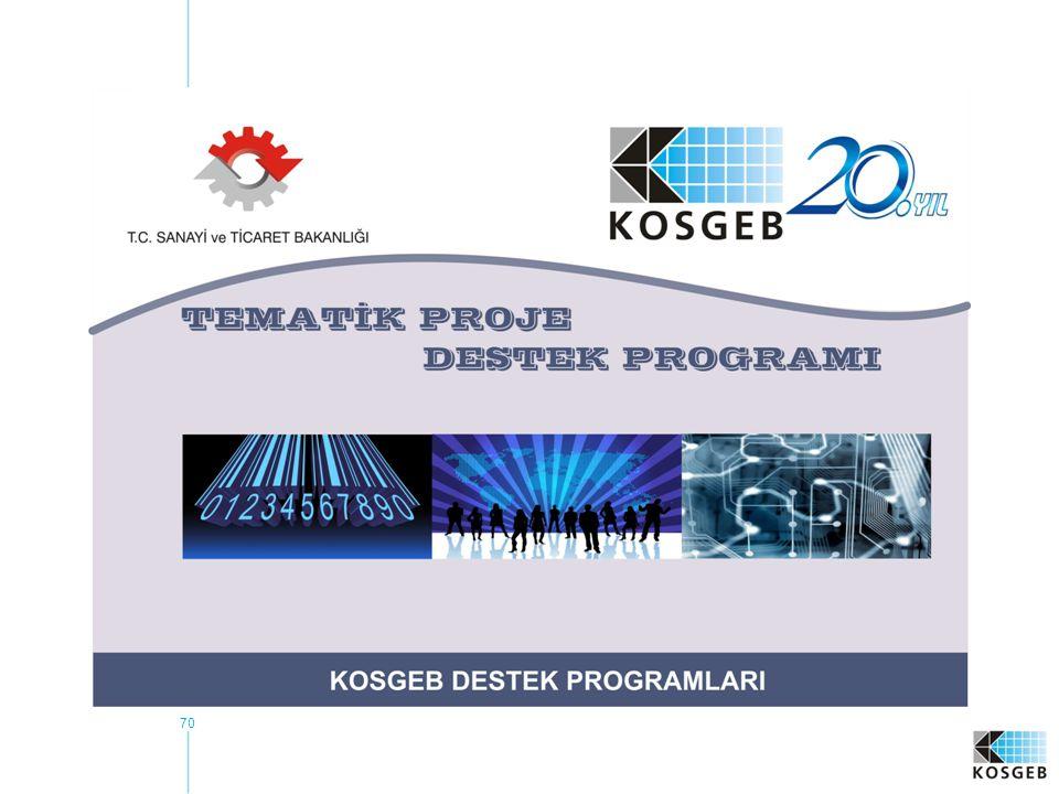 71 PROGRAMIN KAPSAMI VE HEDEF KİTLE Meslek Kuruluşu Proje Destek Programı Çağrı Esaslı Tematik Programı Meslek Kuruluşları KOBİ'ler Meslek Kuruluşları