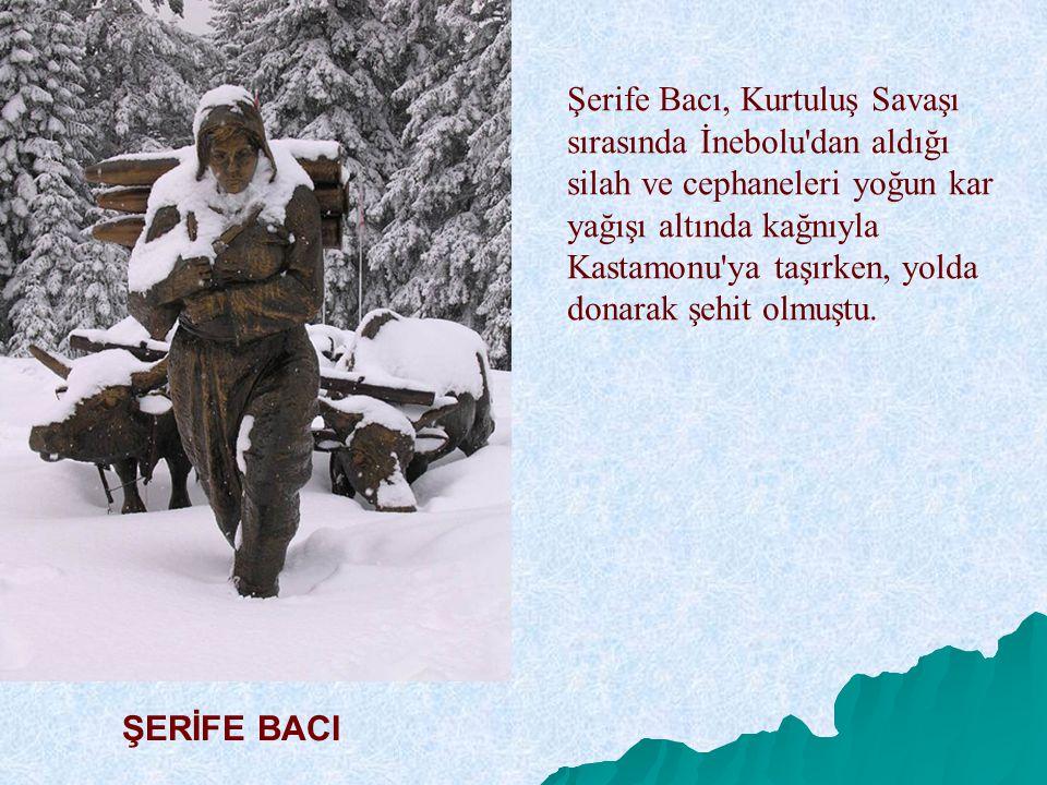 Şerife Bacı, Kurtuluş Savaşı sırasında İnebolu'dan aldığı silah ve cephaneleri yoğun kar yağışı altında kağnıyla Kastamonu'ya taşırken, yolda donarak